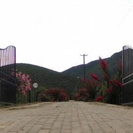 Altes Entrance
